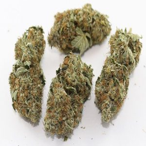 Buy Hindu kush Weed Strain UK