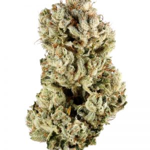 Buy Gorilla Glue #4 Strain UK