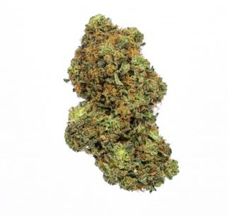 Buy Motorbreath Weed UK